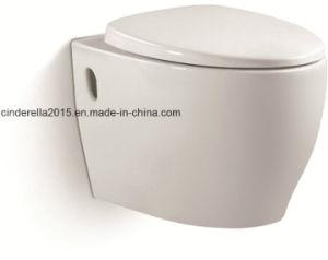 Вернуться к стене Wc напольные туалет с потайной смывных бачков