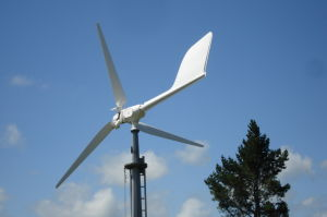10kw 220V/240V/380V Home Use Low Rpm Horizontal Wind Turbine Generator