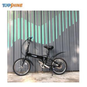 Bicicletta piegante della bici della strada personalizzata OEM del fornitore della bicicletta della Cina per i capretti