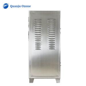 generatore industriale dell'ozono 100g, generatore industriale dell'ozono dell'aria pulita
