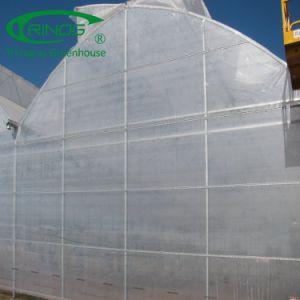 低価格の生態学的な農業のためのマルチスパンのフィルムの温室