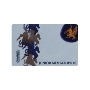 Лазерный переменной Datamatrix Печать открыток / PVC карт RFID