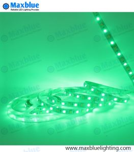 Indicatore luminoso di striscia di RGB LED Strip/LED/indicatore luminoso di striscia flessibile di RGB LED Strip/LED della striscia del LED/striscia flessibile del LED