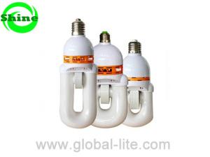(SLU) Zelf Gestabiliseerde Electrodeless Lamp, de Lamp van de Inductie