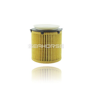 China Auto Oil Filter für BMW Series Car 11427634291