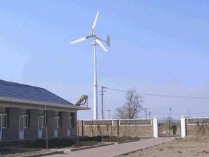 potere della turbina di vento del generatore del mulino a vento 1000W