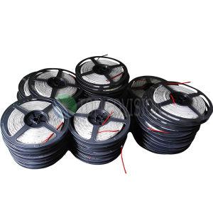 C.C. flexible de la tira el 120LEDs/M 12V 24V de la alta calidad SMD3528 LED