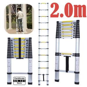 2つのM Telescopic Ladder En 131/SGS Certificate