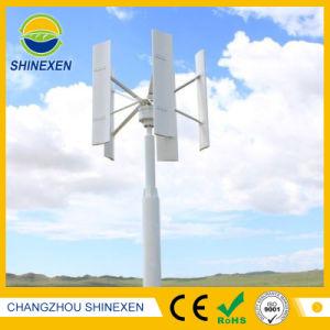 sistema di generatore della turbina del vento di 100W 12V/24V