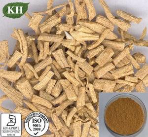 ISO&Koshal puros e naturais de alta qualidade certificado Bupleurum extraia