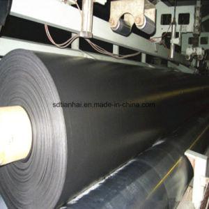 De Papierfabriek gebruikt HDPE het Blad/de Voering van Geomembrane