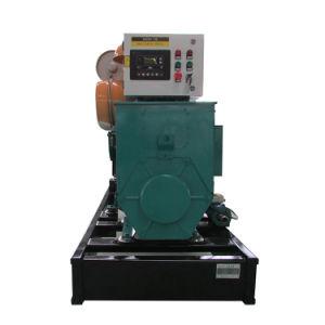 Biogas-Generator des Pulita Fabrik-Preis-120kw für Verkauf