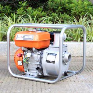 Bison (China) Bswp20 2pulgadas de alta elevación de la bomba de desplazamiento de grandes piezas de bomba de gasolina de venta caliente
