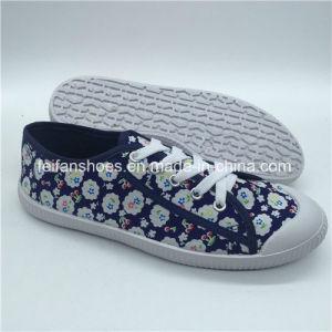 Новые поступления женщин ЭБУ системы впрыска Canvas обувь повседневная обувь (HP0315-3)
