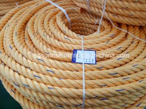 引っ張りのボートのための等しいDsrの品質の係留ロープ熱い販売PPのロープ
