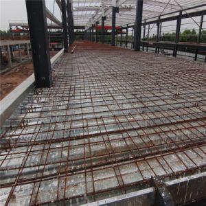 Professional diseñado prefabricados de estructura de acero industrial para almacén al PRD