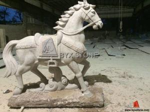 Het het Dierlijke Standbeeld/Beeldhouwwerk van het Paard van de Steen van het graniet voor de Decoratie van de Tuin