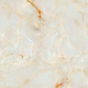 De porselein Opgepoetste Tegels van de Vloer van het Exemplaar Marmer Verglaasde (3D Inkjet 8D604)