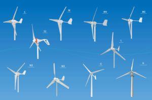 800W génératrice éolienne génératrice éolienne de fabricant