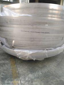 Testa ellittica certificata Ce dell'acciaio inossidabile di iso per la strumentazione farmaceutica della bevanda dell'alimento del contenitore a pressione