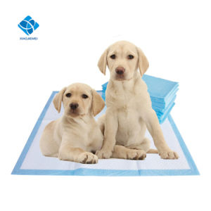 ちっぽけちっぽけなパッドをトレインしている使い捨て可能な60*60cm柔らかい極度の吸収性のIncontienceペット子犬