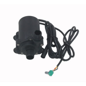 12V Pompen de Met geringe geluidssterkte van de Stroom 1200L/H van gelijkstroom voor het Verwarmen van het Doorgeven het Leveren van het Water van het Gebied