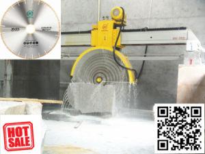 De brug zag Multiblade Snijder van het Blok voor Knipsel Granite&Marble - de Scherpe Machine van de Steen van China voor Verkoop
