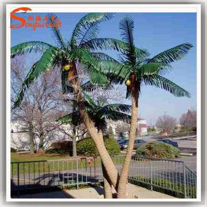Jardim Ornament Sucedâneos do coqueiro de Palmeira
