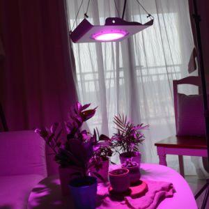 De LEIDENE van de Reeks van de mini-Zon van Samvol 30W Installatie kweekt Lichte Waterdichte LEIDENE het Groeien Lamp