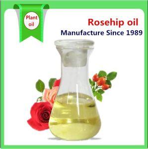 Aceite de la cosmética de alta calidad de Aceite de Rosa Mosqueta puro natural