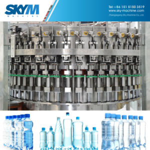 最もよいサービス水瓶詰工場の飲料水の充填機