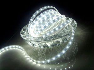 LED de 30 / 60 / 120 LED LED LED/2403528/2835/5050/5630/5730/335/3014 SMD LED 5mm LED DIP CC12V/24V DC/AC110V/AC220V IP20/IP33/IP65/IP67/IP68 tira flexible de LED