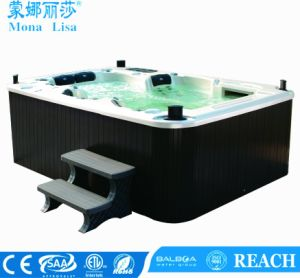 Monalisaの屋外の温水浴槽の鉱泉(M-3307)