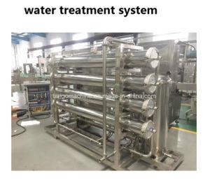 병에 넣은 물 플랜트를 위한 RO 급수정화 처리 장비