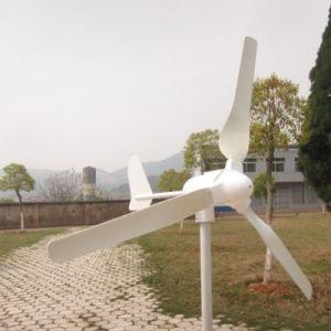 가로등 & 홈 사용을%s 1kw 48V 바람 발전기