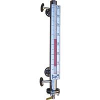 Indicatore di livello magnetico