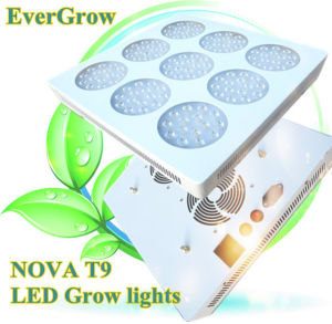 Distributionのための上LED Grow Light