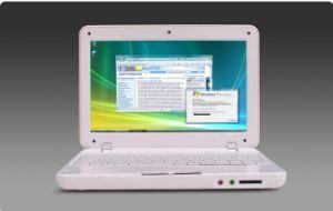 """10.2 """"Netbook (ss-N10)"""
