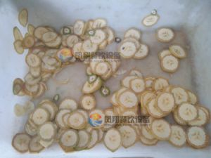 El cuadro eléctrico de tipo banana Cilantro cebollino puerro Chili Pepper Cortador de okra