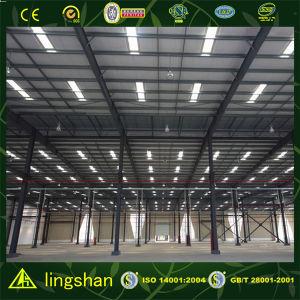 ISO лампы сегменте панельного домостроения стали структуры демонстрационный зал склада (LS-S-084)