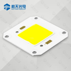 COB 20W 30W 50W 80W 100W Reflector LED