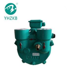 Жидкость 5.5kw кольцо вакуумного насоса для WPC экструзии линии