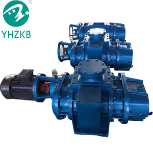 Racines industriel pour la production de la pompe à vide