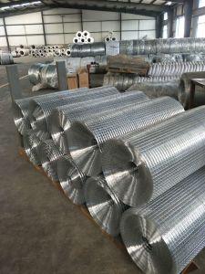Treillis soudés en acier galvanisé pour clôture