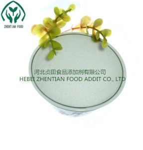 Benzoate van het natrium Prijs de Van uitstekende kwaliteit van de Fabriek van Additvies van de Rang van het Voedsel