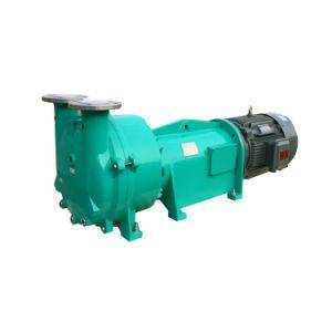 La pompe à anneau liquide 2BV2061
