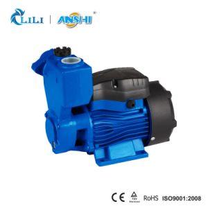 Anshi 0.5HP Zusatzwasser-Pumpe mit thermischem Schoner (KS60)