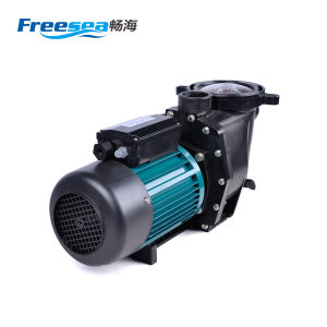 Pompa ad acqua elettrica per acquicoltura o Aquaponic