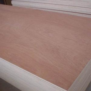 屋内装飾のための1220*2440mm Okoumeの商業合板