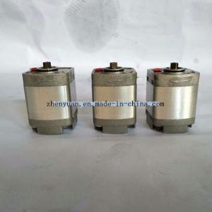 굴착기 부속을%s 관련되는 Cbt G0.84 21MPa 기어 펌프